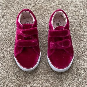 Toddler cat and jack velour shoes